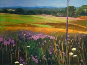 meadow-sponberg
